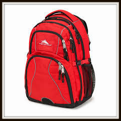 Swerve Backpack from High Sierra