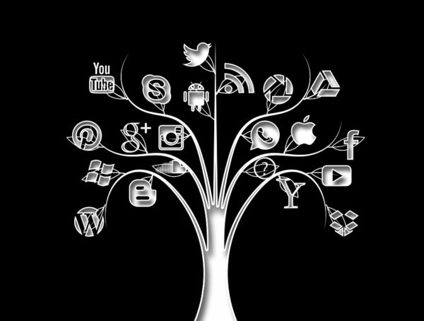 Tree Networks Structure Social Media Internet